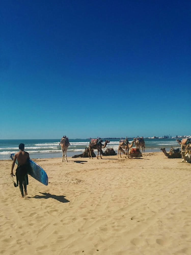 Surfing in Essaouira by Lolanoviajasola